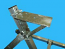 BR-27; Mounting Plate